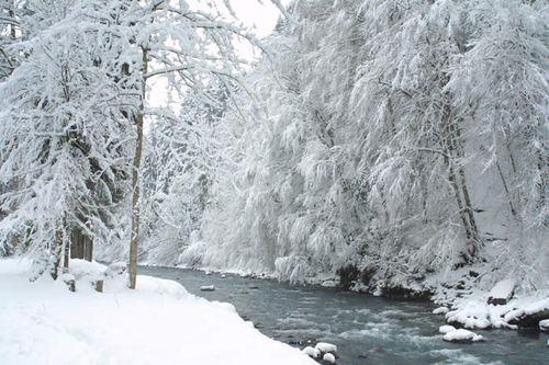 Snow0411