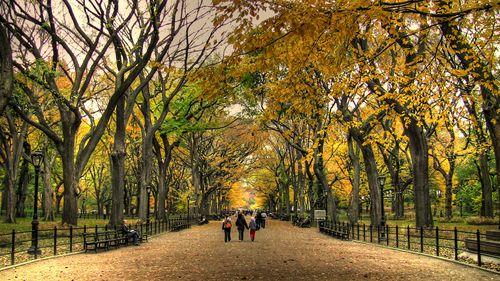 Central_park_autumn